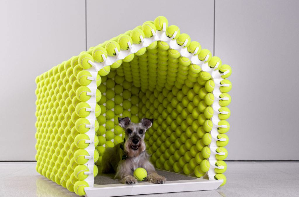 Psy inspirują designerów