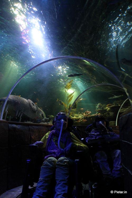 Maiju ja Pietari Sea Lifen tunnelissa