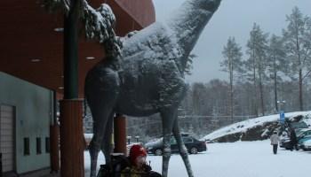 Kirahvi eksynyt Savonlinnaan.