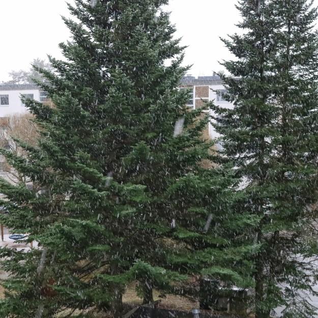 Lunta sataa.