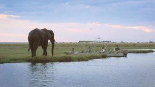 Kasane, Botswana. HOME