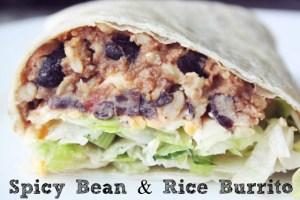 Spicy Bean & Rice Burrito