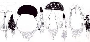 Sketch7014