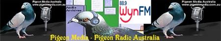 pigeonmediabanner