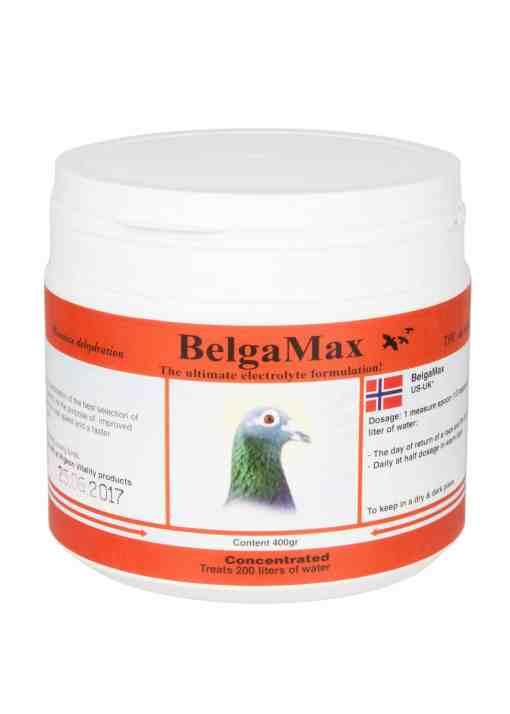 BelgaMax