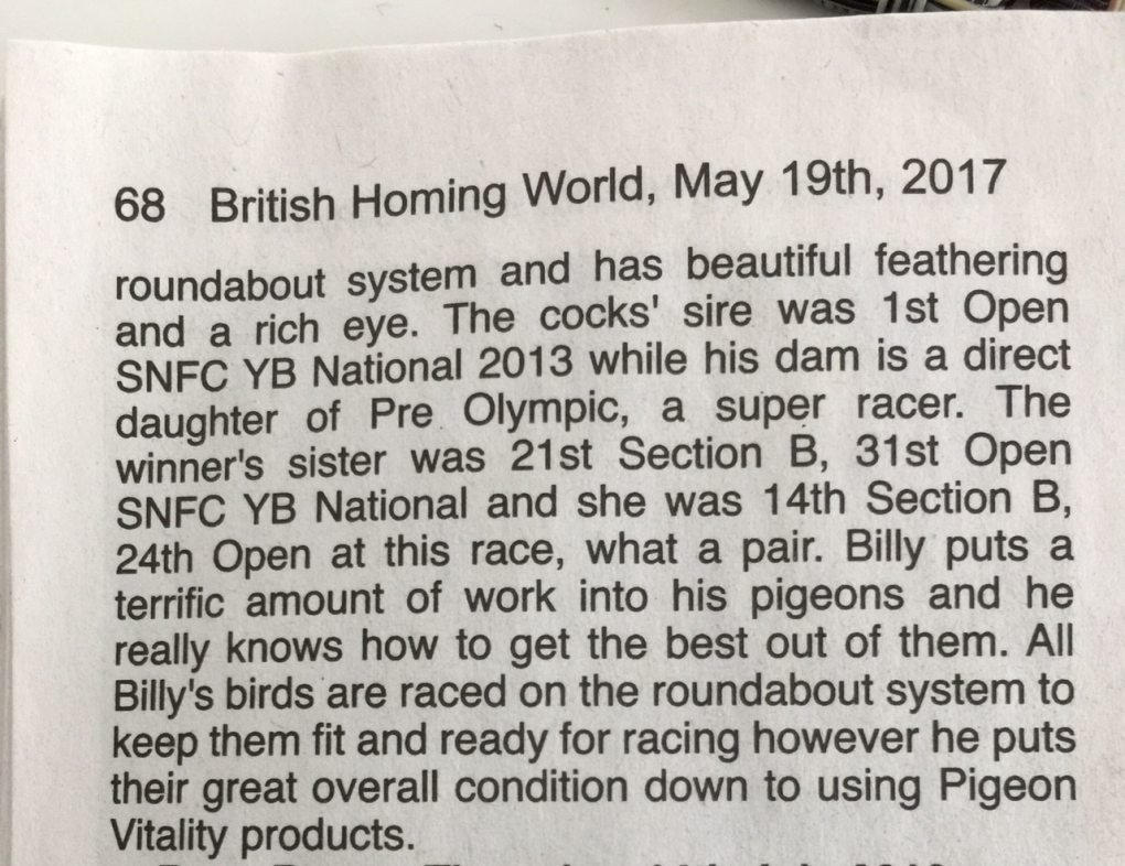 billy_bilsland_british_homing_world_may_2017_3
