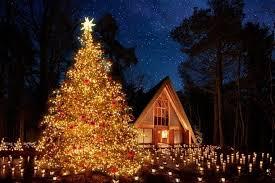 【2020年12月】クリスマスが迫りくる中で気温がググっと下がるのはサンタさんのおかげ?(´・ω・`)知らんがな  3週目のまとめ【第3週目】