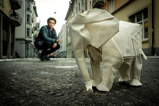 Sipho Mabona Origami WHITE ELEFANT