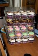 Lotsa Cupcakes