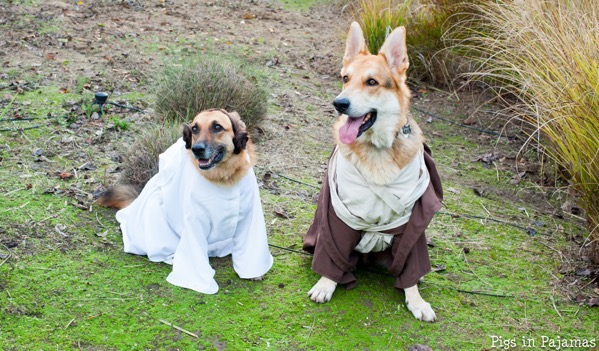Leia and obi wan 30504357210 o