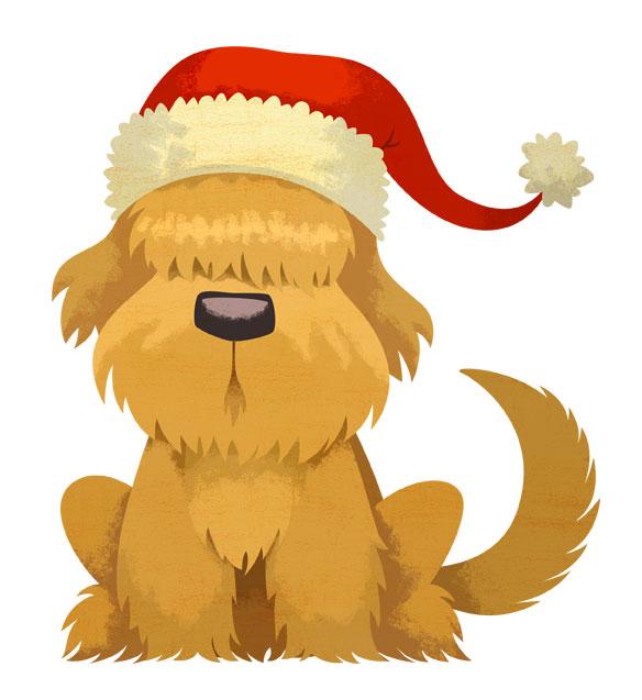 furry_dog