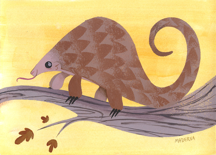 A bunch of doodles and a pangolin