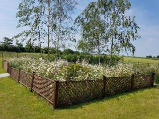 memorial-garden1(jun17)