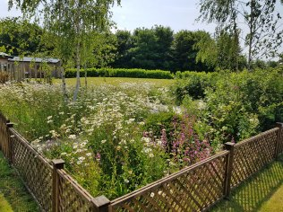 memorial-garden2(jun17)