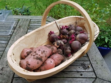 potato+beetroot-crop(jul17)