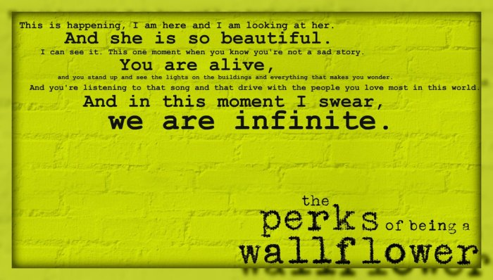 we_are_infinite_the_perks_of_being_a_wallflower_by_melciah1791-d5wnapn