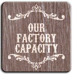 Our Factory Capacity