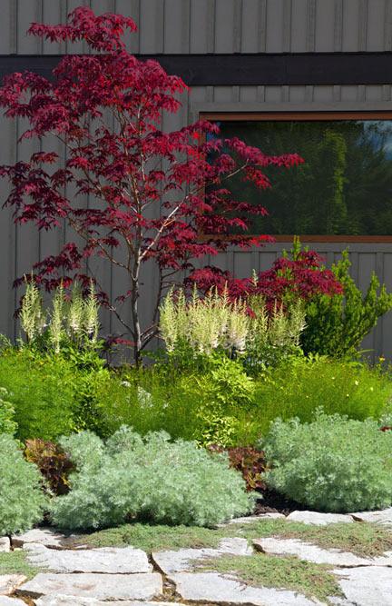 Garden softens exterior wall of house