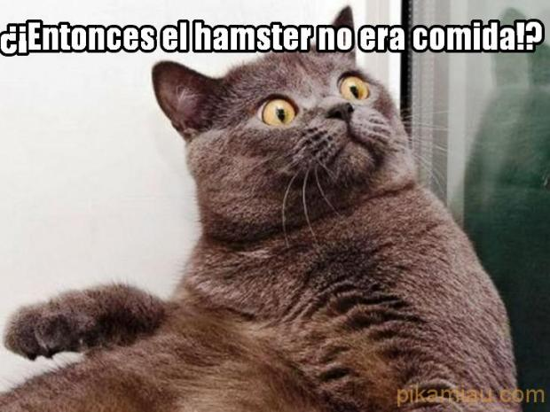 Hamster no comestible