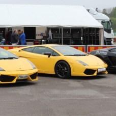 Group of Lamborghinis