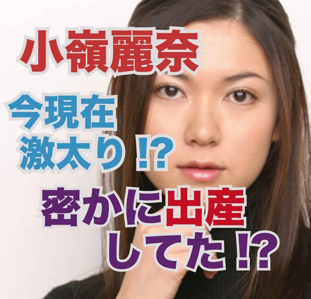 小嶺麗奈の2019年現在の激太り画像や今の仕事は?密かに子供を産んでた!?
