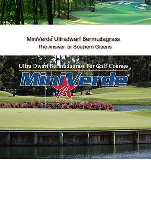 MiniVerde™ Website