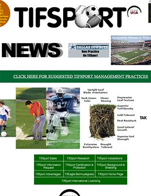 TifSport Website