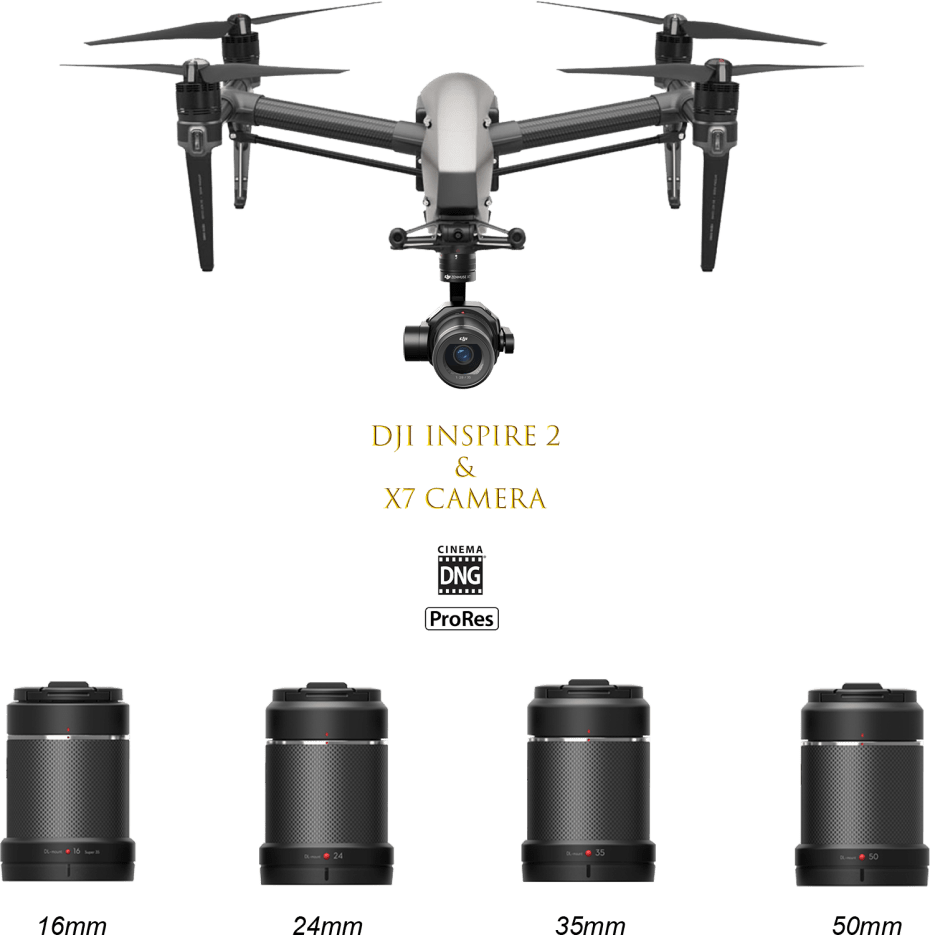 Pro Gear X7 V2