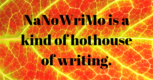 NaNoWriMo is a kind of hothouse of writing.