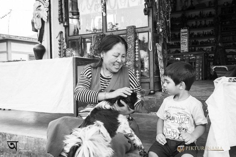 Tibetan refugee at Tibetan refugee camp at Pokhara