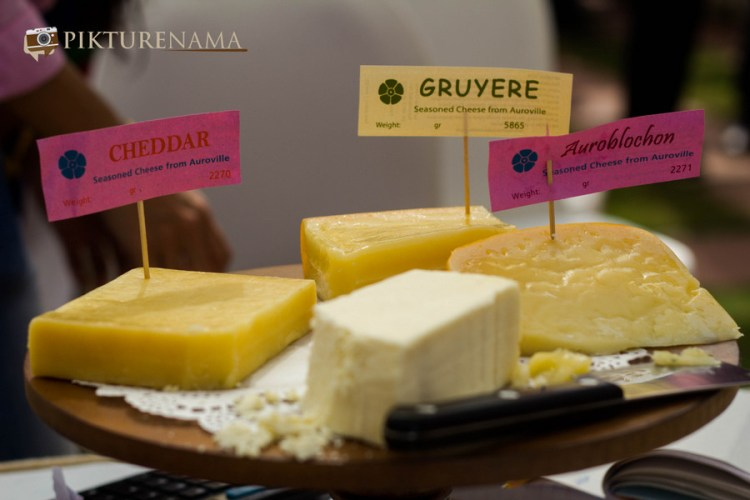 Exotic cheeses from living free at The farmers market kolkata by Karen Anand
