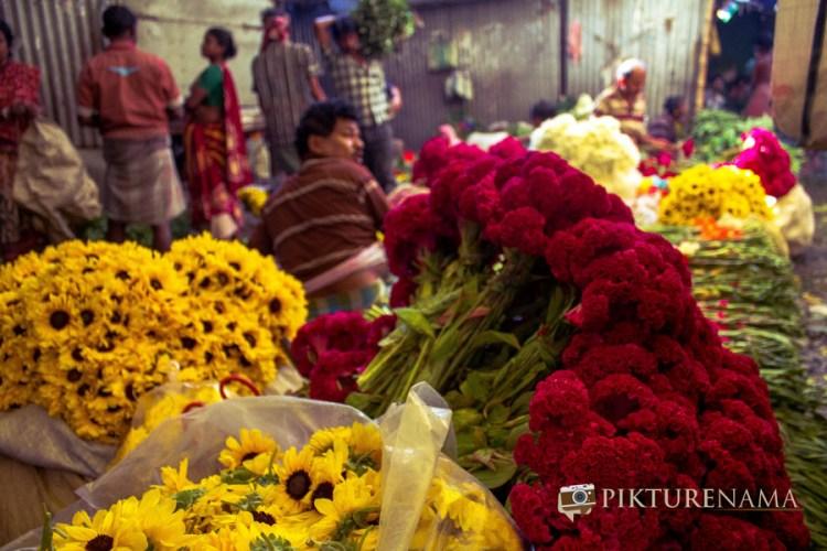 Mullick Ghat flower market Kolkata 15