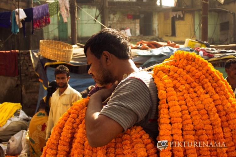 Mullick Ghat flower market Kolkata 11