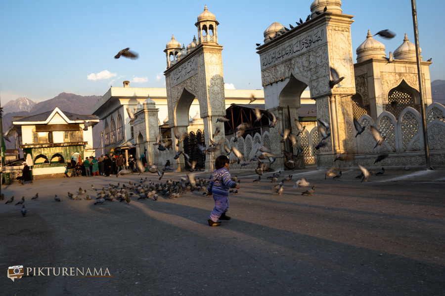 Hazratbal Srinagar the kid chases