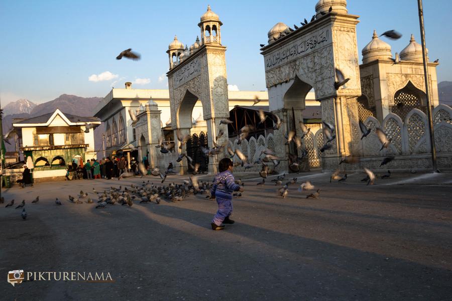 Hazratbal Srinagar the kid chases