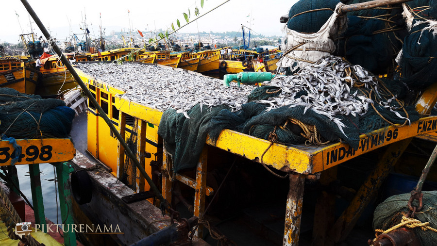 Vizag fishing harbour 9