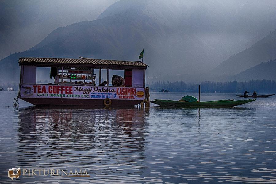 Shikara Ride in Dal Lake 18