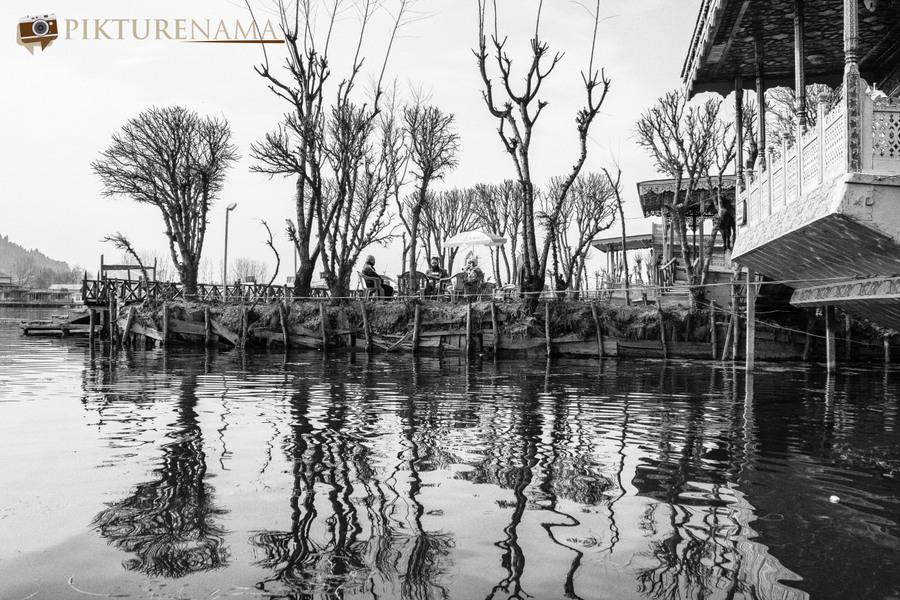 Shikara Ride in Dal Lake 32