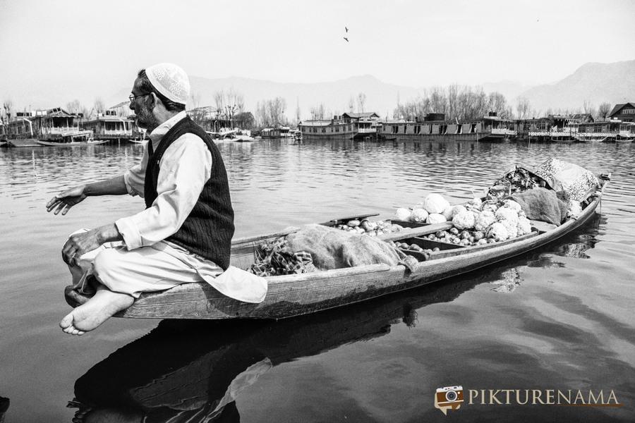 Shikara Ride in Dal Lake 35