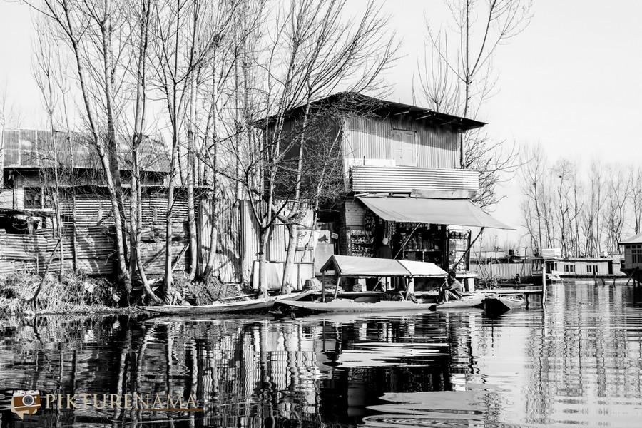 Shikara Ride in Dal Lake 6