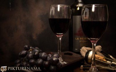 Taj International Vine and Dine experience – Are Indians drinking the right wine?