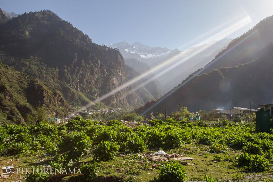 Yamunotri Trek morning rays