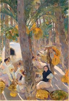 Elche, el palmeral, 1919