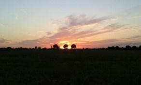 Un tramonto nel parco