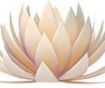 Logo_Pilates Sursee Zuschnitt Blume