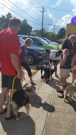 Good Neighbors Animal Rescue Party