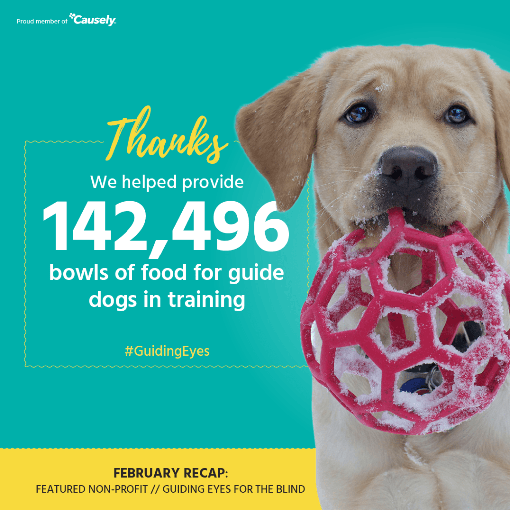 142,496 bowls of food for guide dogs in training donated