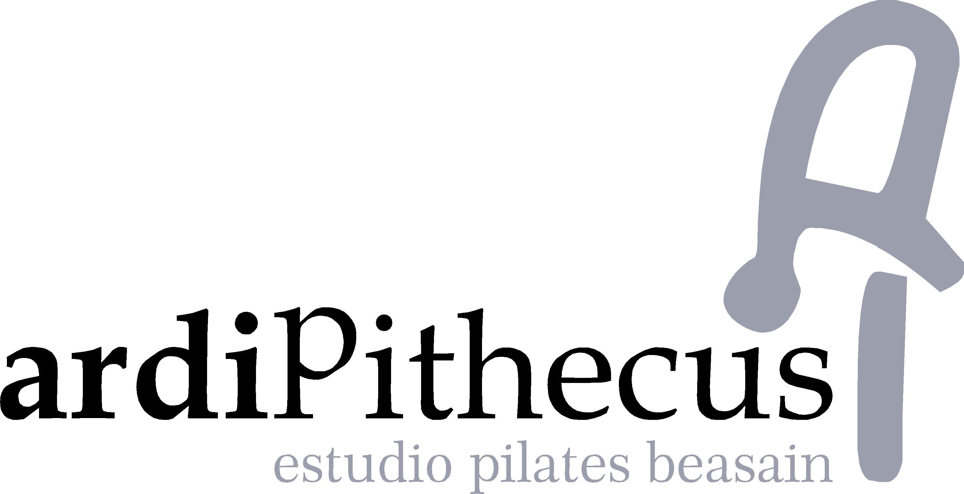 Ardipithecus Estudio Pilates