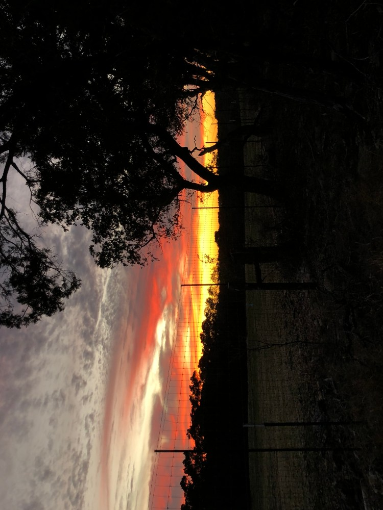 Austin has beautiful sunsets at the Getaway House.