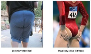 the gluteals in an active person and a sedentary person